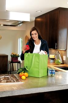 Bg161 insulated grocery bag with zipper